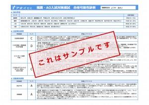 推薦・AO対策入試模試診断_メイリオ見本